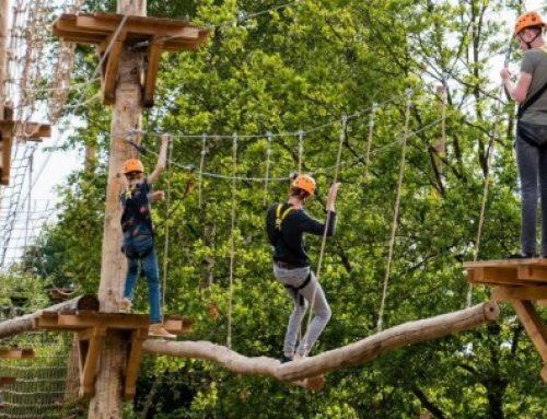 Klimmen & klauteren bij Klimpark Brabant
