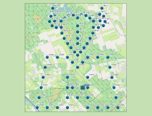 Geo-art op de Maashorst